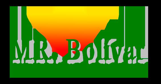 MR Bolivar
